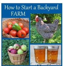 Your Big Backyard Magazine by How Big Is Your Yard Picture With Breathtaking Backyard Farming