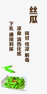 slogan cuisine loofah taste dishes advertising slogan propaganda png image and