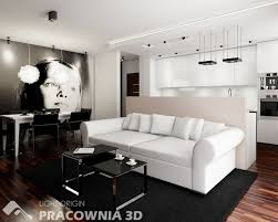modern living room decorating ideas for apartments marvelous modern living room decorating ideas for apartments with