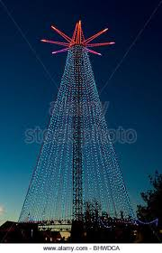 Decorated Christmas Tree Nz by New Zealand Christmas Tree Stock Photos U0026 New Zealand Christmas