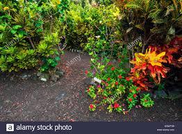 Kona Botanical Gardens The Galaxy Garden Paleaku Gardens Peace Sanctuary Kona Coast