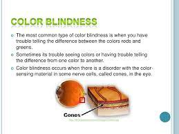 Most Common Colour Blindness Color Blindness