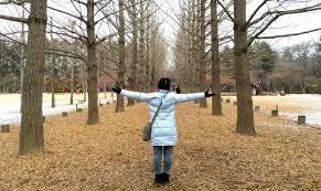 my 5 day winter in korea itinerary tips cost breakdown
