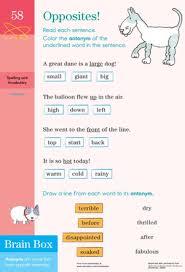 opposites practicing antonyms worksheet education com