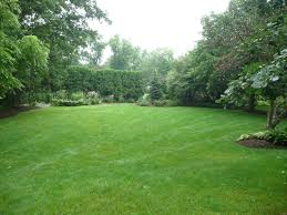 Landscaping Ideas For Big Backyards by Backyards Simple Landscaping Ideas For Small Backyards With