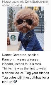 Hipster Dog Meme - hipster dog sheik drink starbucks for added coolness name cameron