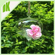australia selling terrarium glass hanging hook with succulents
