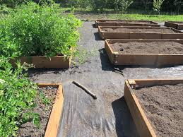 How To Build A Raised Flower Bed Raised Bed Gardening Osu Extension Service Offers Advice On