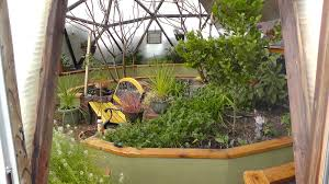 Backyard Greenhouse Winter Winter Gardening 2017 And A Hat Tip To The Gardener Growing Spaces