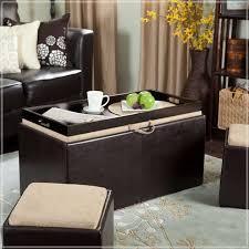 Black Storage Ottoman Black Storage Ottoman With Tray Express Air Modern Home Design