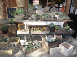 Unique Planters For Succulents by Succulent Container Ideas Tended