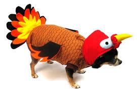 turkey costume turkey thanksgiving costumes