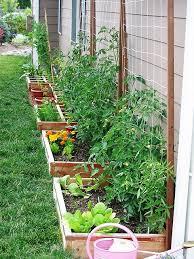 Veg Garden Ideas Our Suburban Garden Vegetable Garden Gardens And Garden Ideas