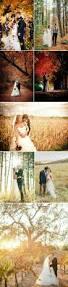 pin galynn becker wedding ideas wedding