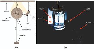 optical approach for measuring oxygen mass transfer in stirred