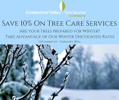 winter services cumberland valley tree service and landscaping