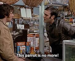 no more parrot album on imgur