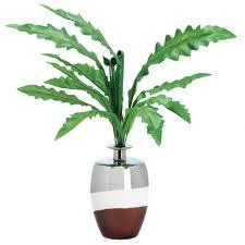 Plant Vase Vases Design Ideas A Few Beautiful Plant Vases Fish Plant Vase