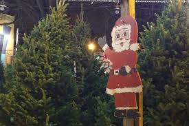 where you can buy a christmas tree in chicago map lincoln