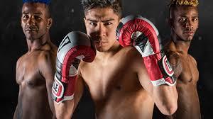 target black friday punchingvbag title boxing equipment boxing gloves punching bags mma gear