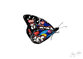 monarch butterfly ink drawing with smarties packaging overlay