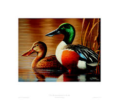 dnr michigan duck stamps and prints available now