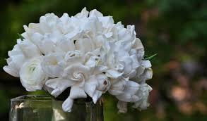 gardenia bouquet gardenias la fleur