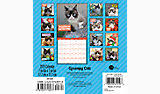 Grumpy Cat Mini Wall Calendar - grumpy cat mini wall calendar ddmn68 day dream