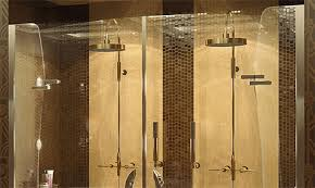 Maax Shower Door Frameless Shower Doors New Purfect Mechanix Shower Doors By Maax