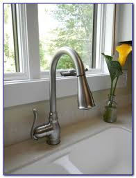 moen anabelle kitchen faucet moen anabelle kitchen faucet home design ideas and pictures