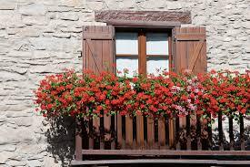 balcony gardening archives balcony garden web