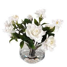 gardenia bouquet gardenia bouquet