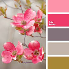 matching colours with pink color inspiration for haley s house main body of the house is the