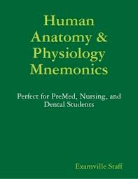 Anatomy And Physiology Pdf Books Human Anatomy U0026 Physiology Mnemonics By Examville Staff Ebook Lulu