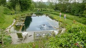 Natural Swimming Pool Biotop Natural Swimming Ponds And Pools With Kingcombe Aquacare