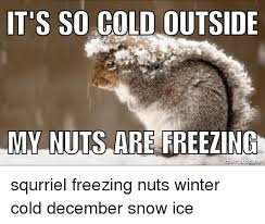 Freezing Cold Meme - it s so cold outside my nuts are freezing mematic net squrriel