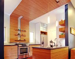 Kitchen Cabinets In Edmonton Kitchen Cabinet Holy Bamboo Kitchen Cabinets Bamboo Kitchen