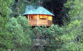 Treehouse Fostering Agency - you u0027ll never want to leaf u0027treesort u0027 hotel with treehouse rooms