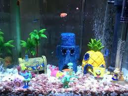in decorations aquarium decoration ideas freshwater fish tank decoration ideas lot