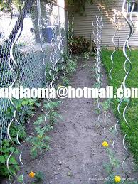 Climbing Plant Supports - spiral plant stakes tomato stakes climbing plant support mesh