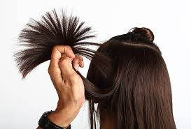 long hair that comes to a point get to know the point cut technique kerensa professional hair care
