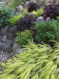 Shady Garden Ideas When A Shady Garden Unexpectedly Turns Finegardening