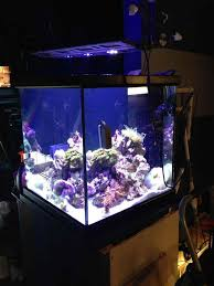 reef tank lighting schedule maxspect r420r razor led fixture reef2reef saltwater and reef