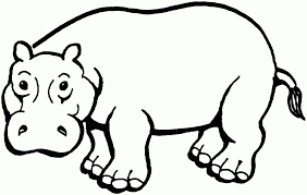 free coloring pages hippopotamus