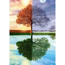 the seasons tree 500 scenic jigsaw puzzle