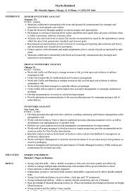 resume templates word accountant trailers plus peterborough inventory analyst resume sles velvet jobs