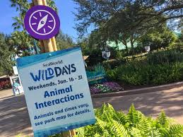 Orlando Traffic Map by Seaworld Orlando Shows You Some U0027wild Days U0027 On Weekends In January