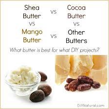 where to buy edible cocoa butter shea butter vs cocoa butter vs mango butter which is best and why