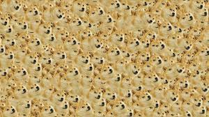 Doge Meme Wallpaper - doge meme iphone wallpaper download popular doge meme iphone