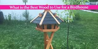what is the best wood to use for cabinet doors what is the best wood to use for a birdhouse craftknights